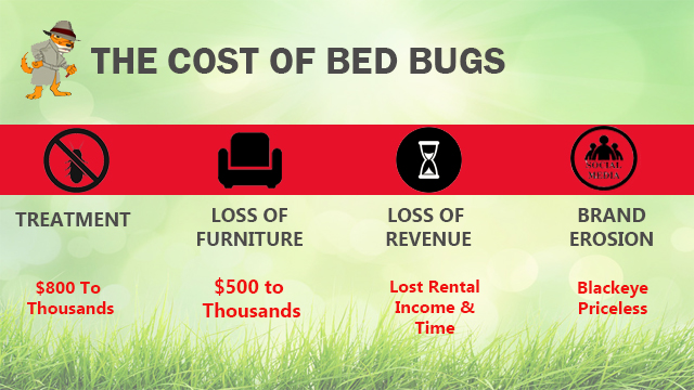 the cost of bed bugs